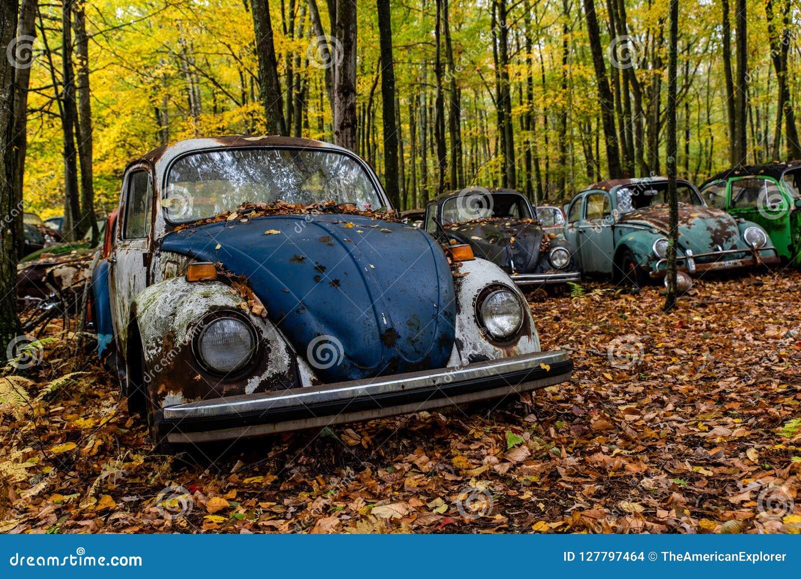Uitstekende VW-Kever - Volkswagen-Type I - het Autokerkhof van Pennsylvania