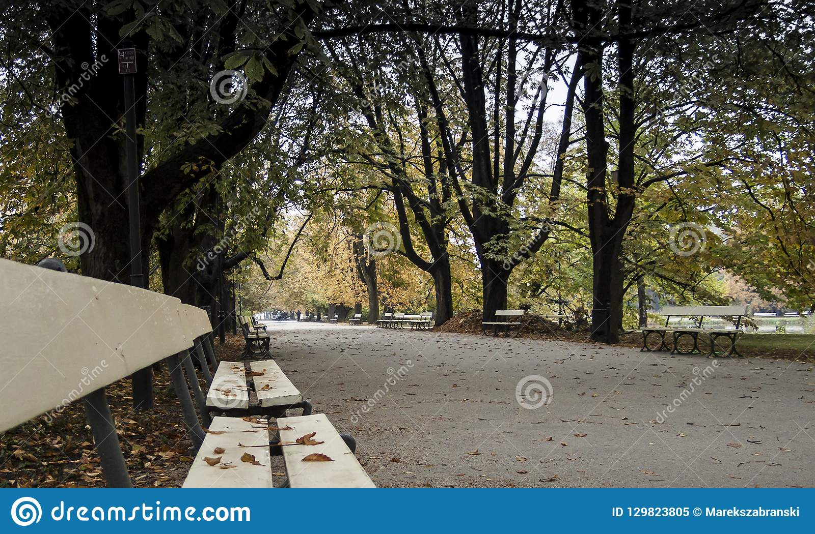 Ujazdowski Park in Warsaw - park alley with benches in autumn
