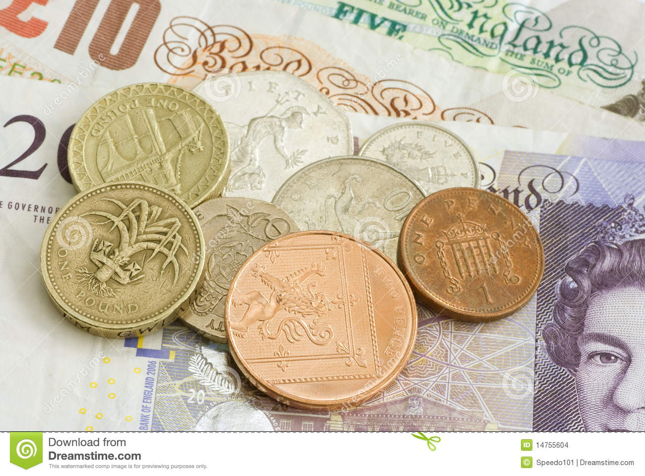 What does an english pound look like
