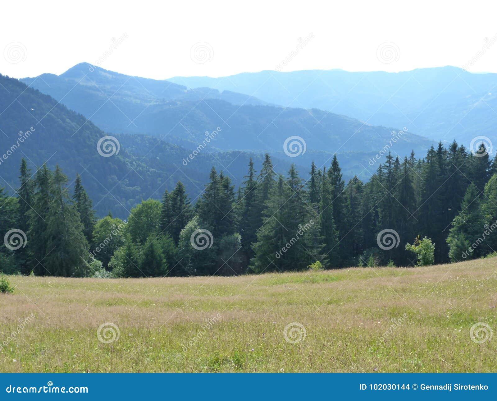 Ukraińscy Carpathians