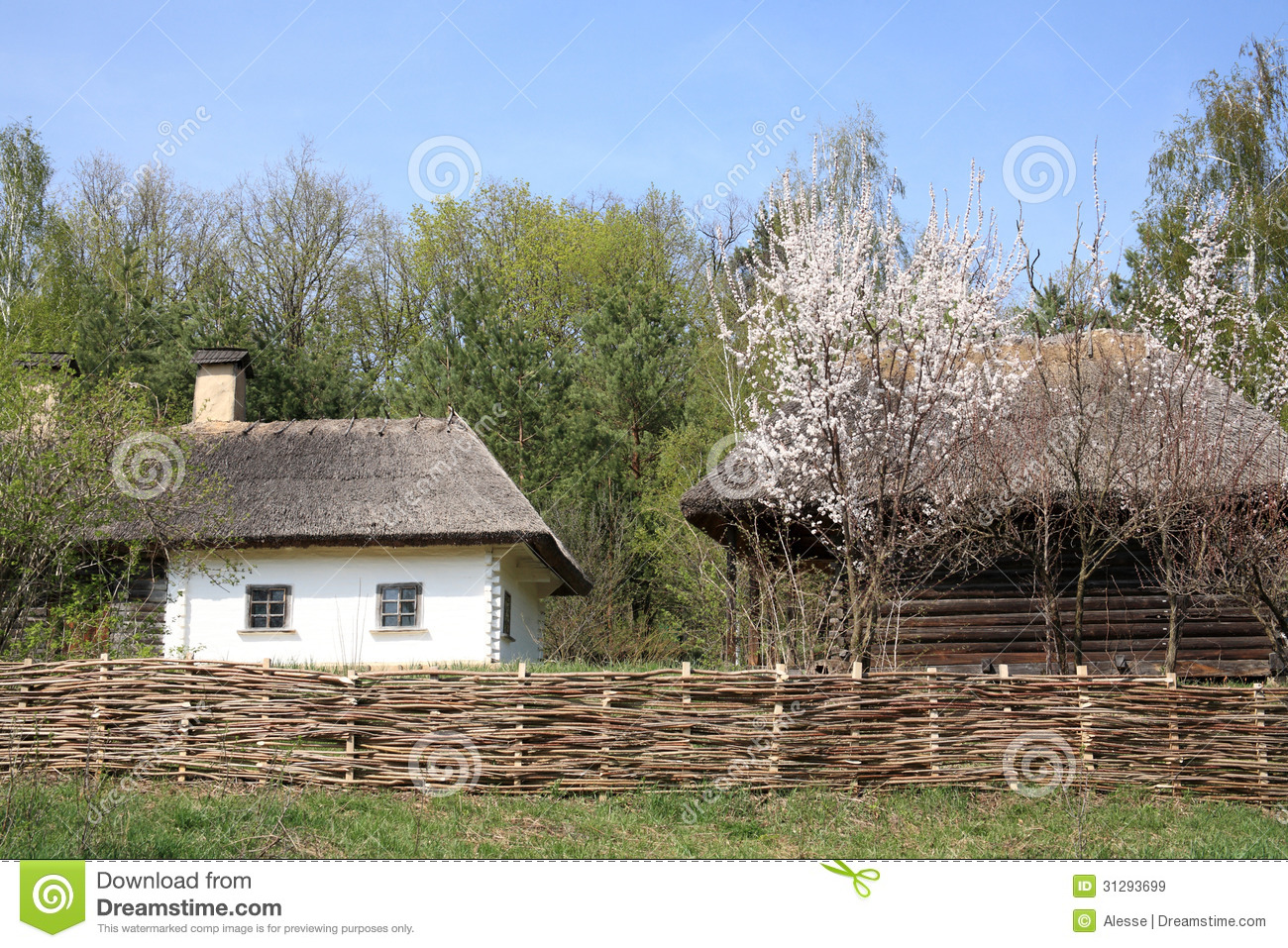 Ukraine countryside stock image image of village spring 31293699 - Countryside dream gardens ...