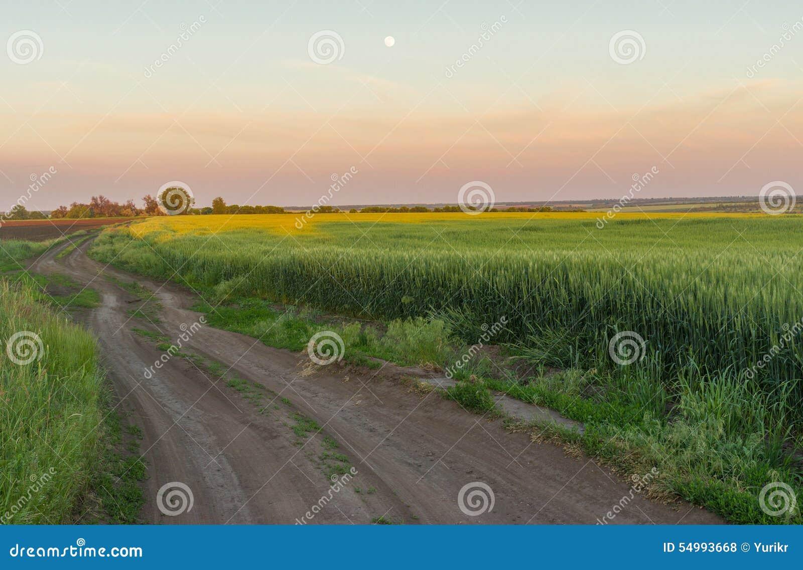 Ukrainskt lantligt landskap med fullmånen