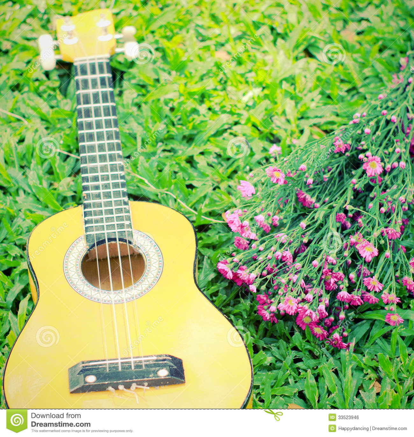 Ukulele Guitar On Grass With Flower Royalty Free Stock Image - Image ...