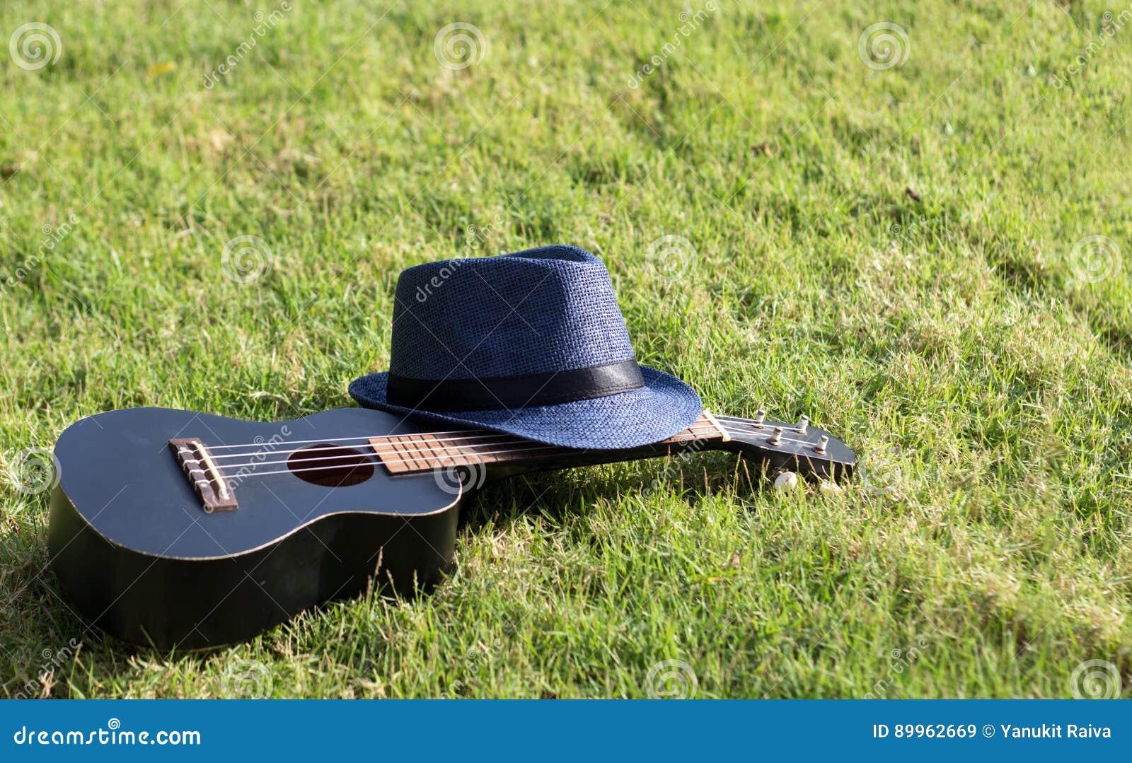 Ukulele med hatten på grönt gräs