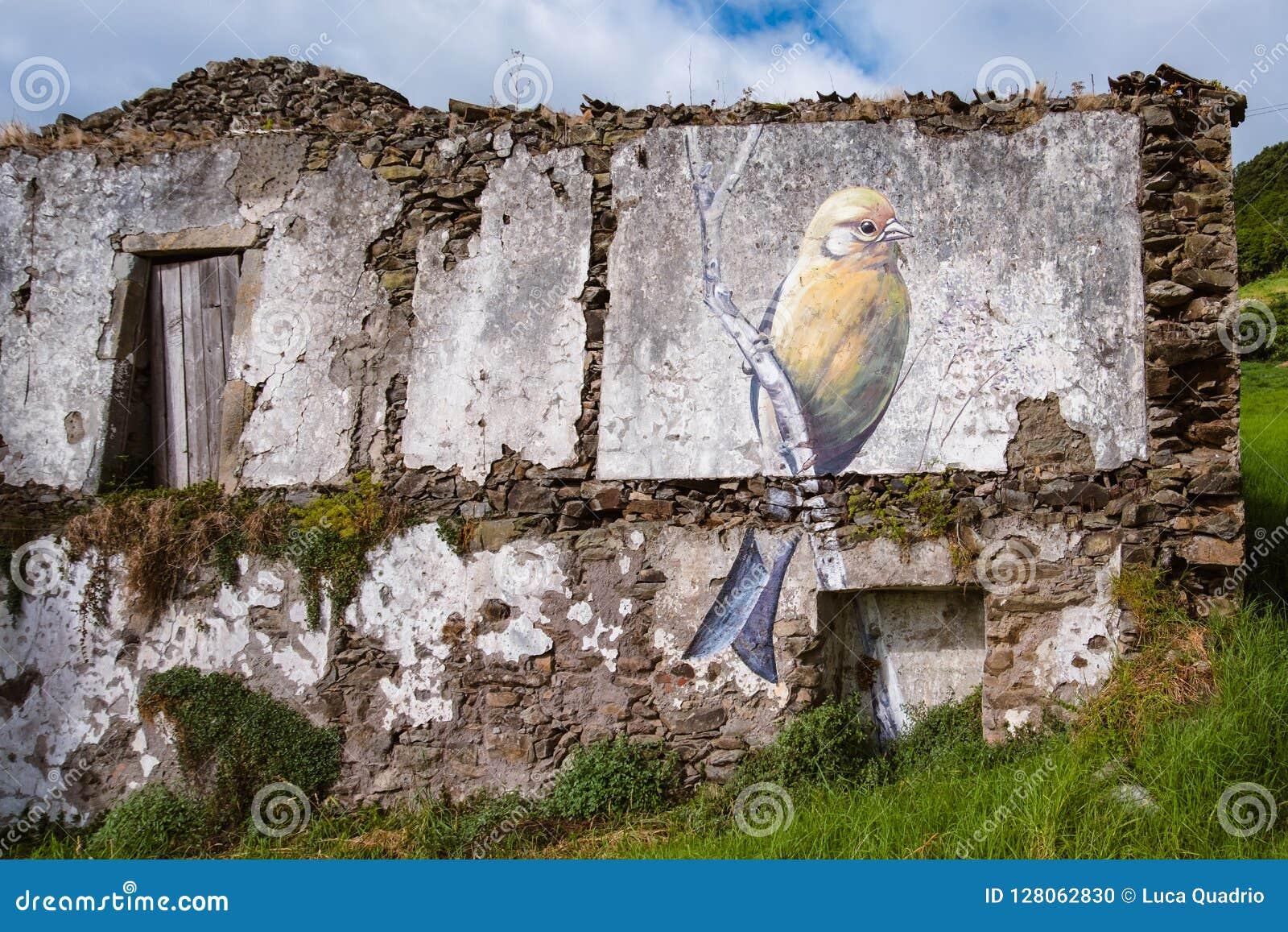 Uliczna sztuka w Flores, Azores wyspie -