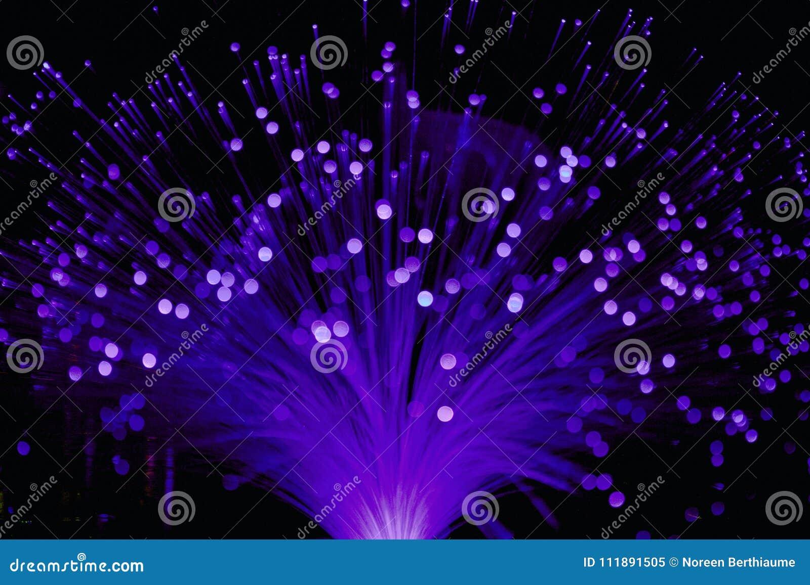 Ultraviolet Fiber Optic Lamp Light