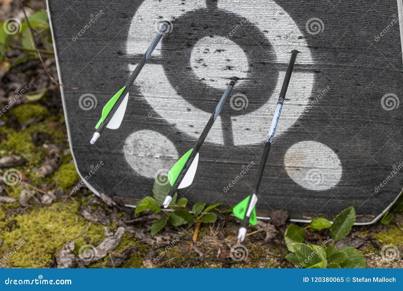 Um alvo do tiro ao arco com as setas nele