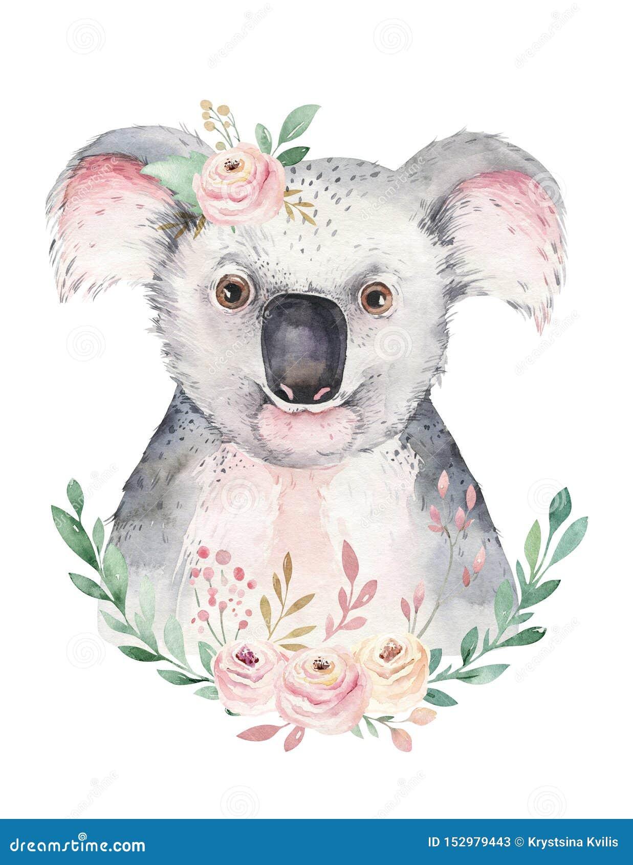 Um Cartaz Com Uma Coala Ilustracao Animal Tropical Da Coala Dos