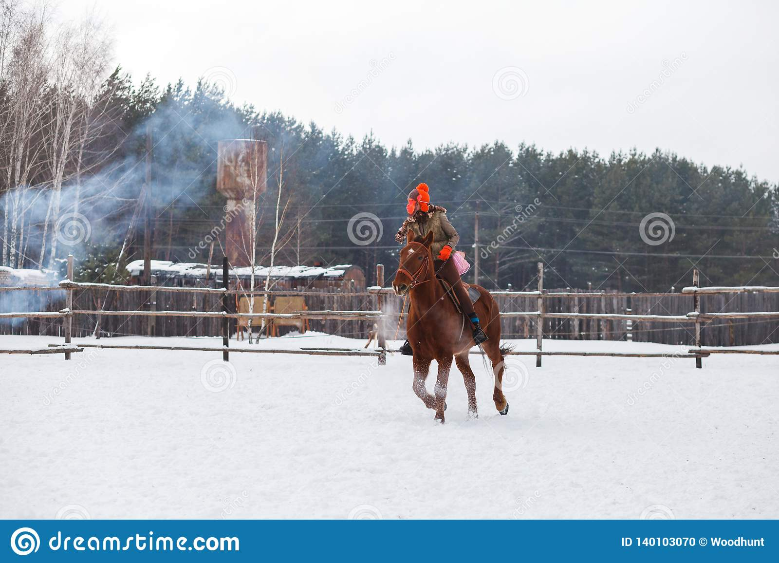 Um cavaleiro vestido como um macaco em um cavalo em um partido das crianças Shrovetide