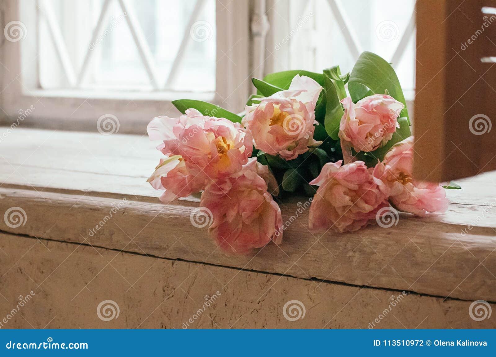 Um delicado focalizou flores cor-de-rosa da peônia no peitoril branco da janela