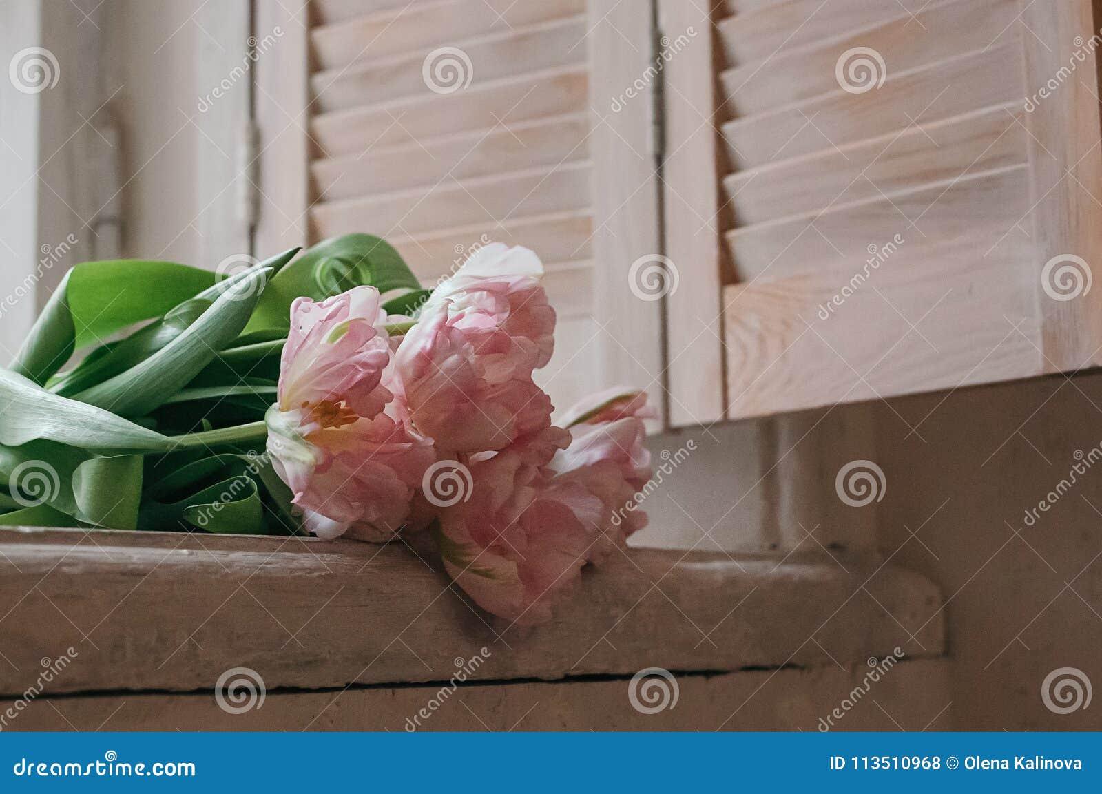 Um delicado focalizou o ramalhete de tulipas da peônia em um peitoril da janela