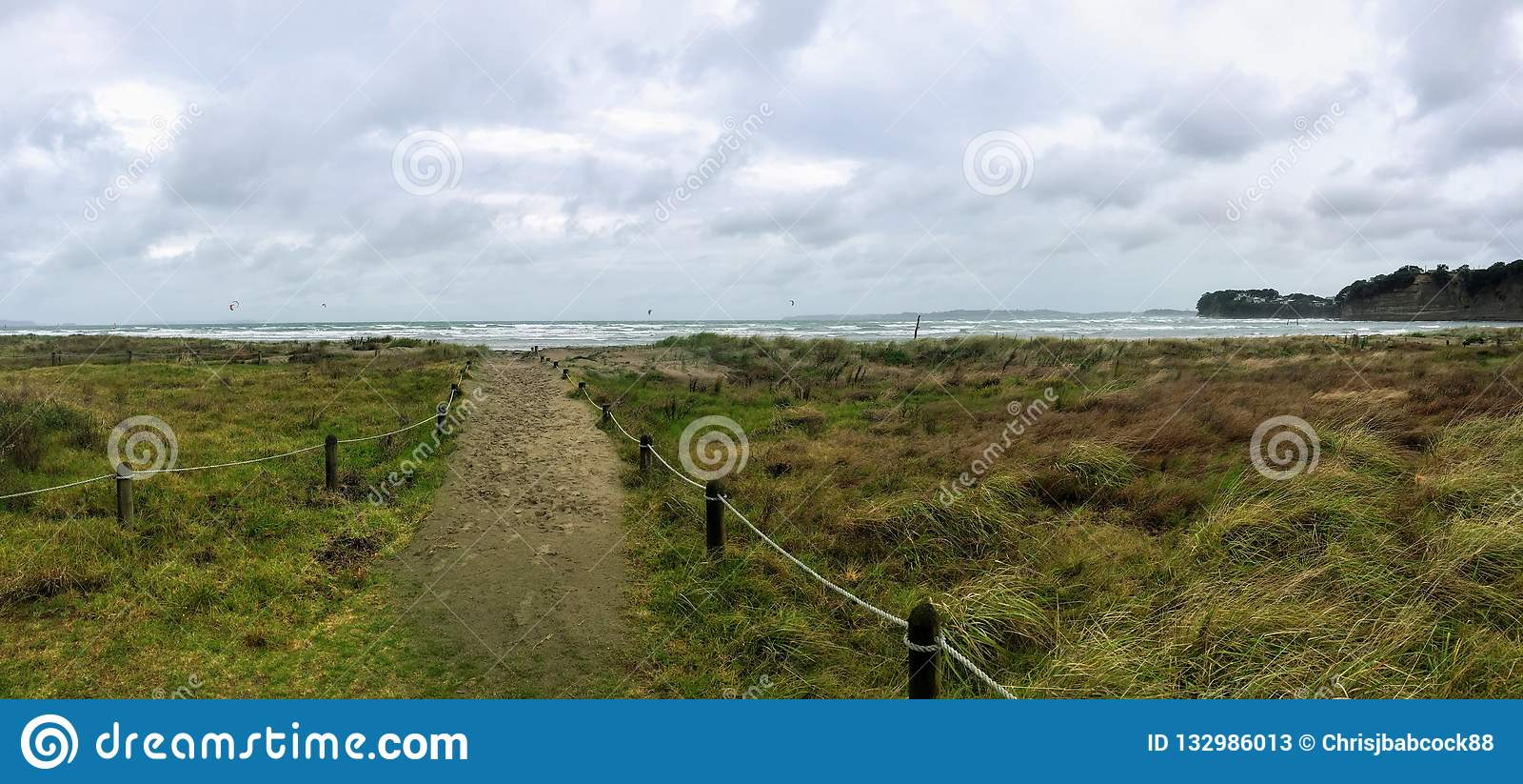 Um dia de verão ventoso ao longo das praias com o sopro longo da grama