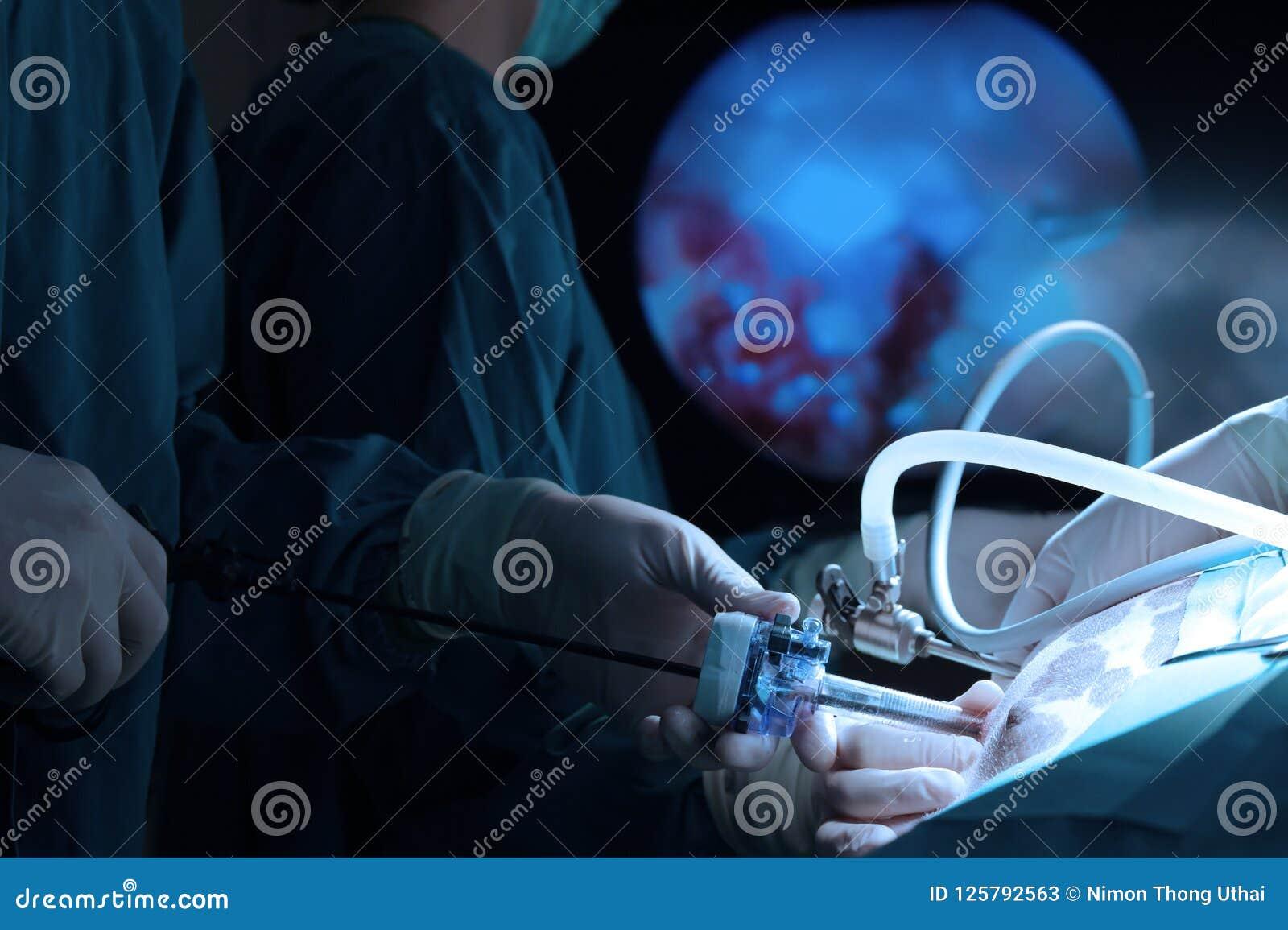 Um doutor veterinário na sala de operação para cirúrgico laparoscopic