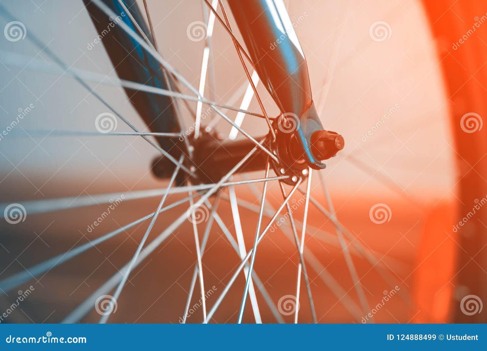 Um fragmento de uma roda de bicicleta