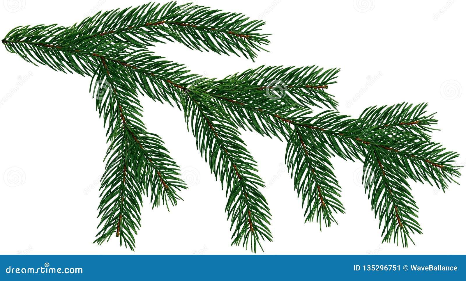 Um Grupo De 8 Elementos Da árvore De Natal Dos Ramos De