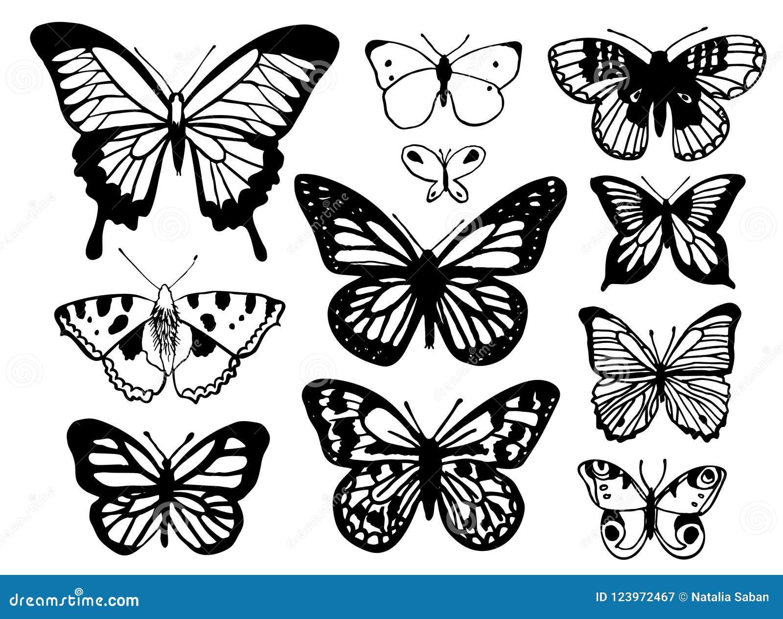 Um grupo de mão esboçou borboletas em um fundo branco