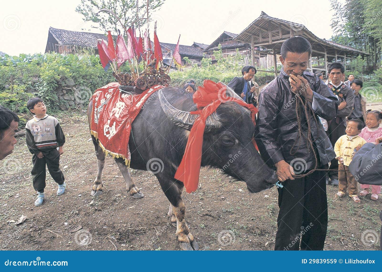 Hmong no sudoeste China