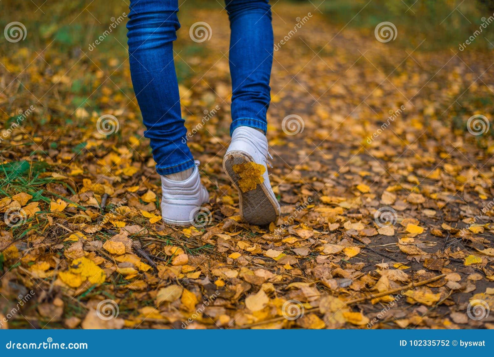 Um homem para de andar O ` s da amiga do ` s da menina Meninas quentes na natureza no parque entre as folhas do amarelo outono