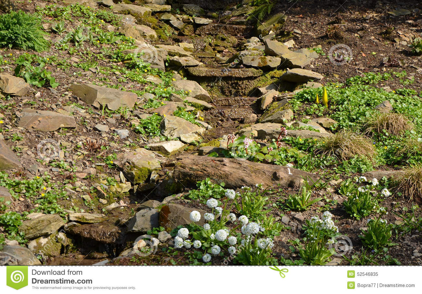 Um jardim de rocha pequeno foto de stock imagem 52546835 - Considerations small rock garden ...