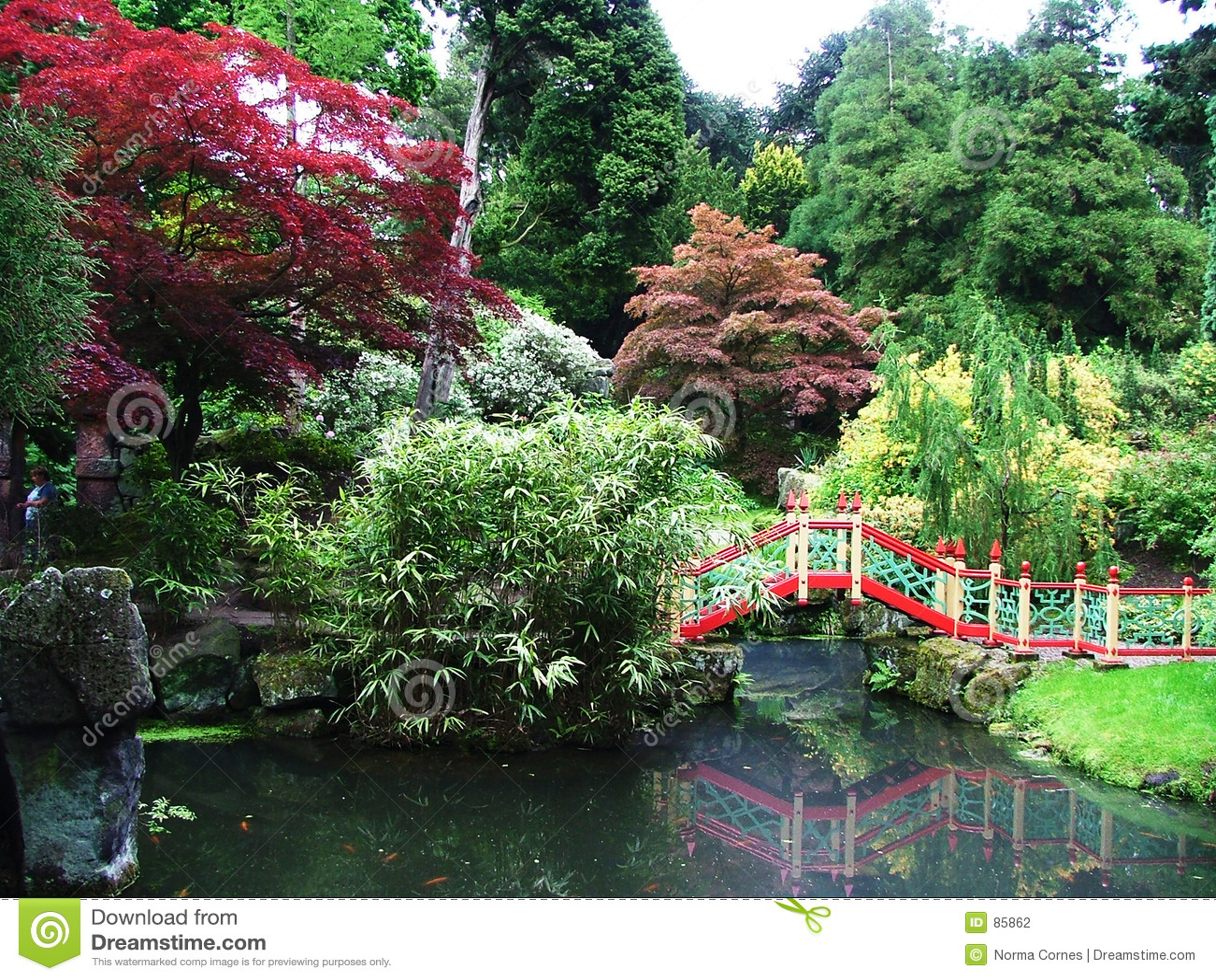 Um jardim japonês