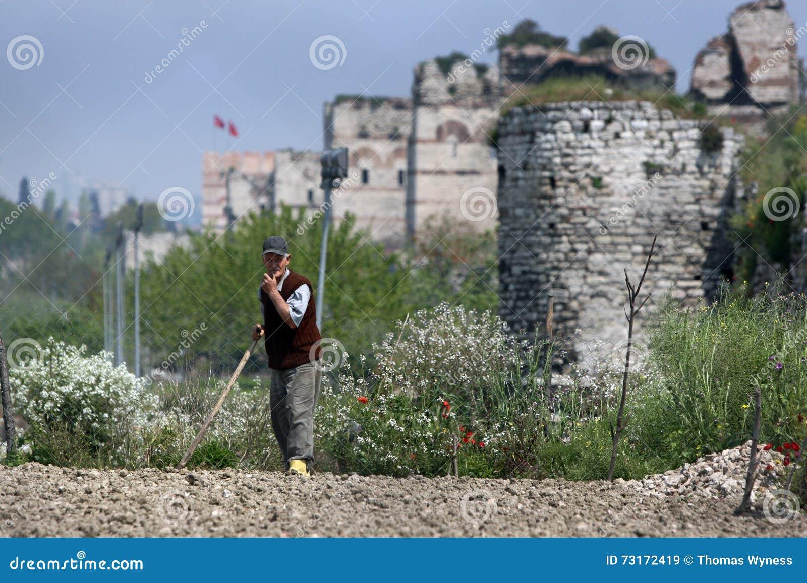 Um jardineiro do mercado em Istambul em Turquia