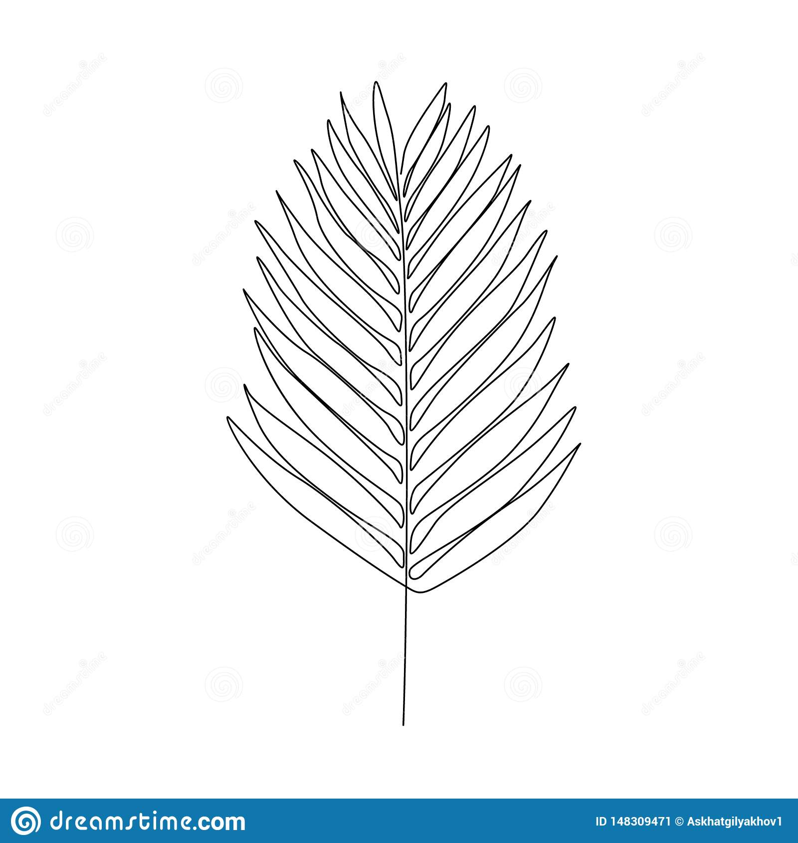 Um A Lapis Folha De Louro Do Desenho Linha Cont Nua Planta Ex Tica