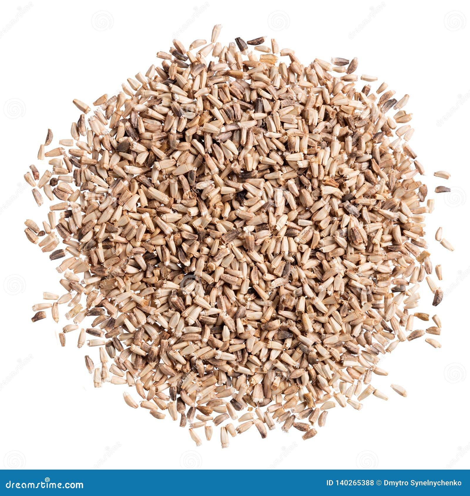 Um montão de sementes da qualidade da chicória, para seu jardim bonito pessoal
