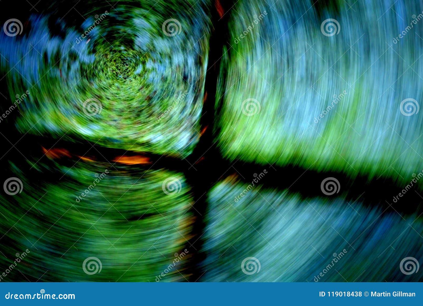 Um movimento de giro de uma reflexão da poça do ` s da árvore