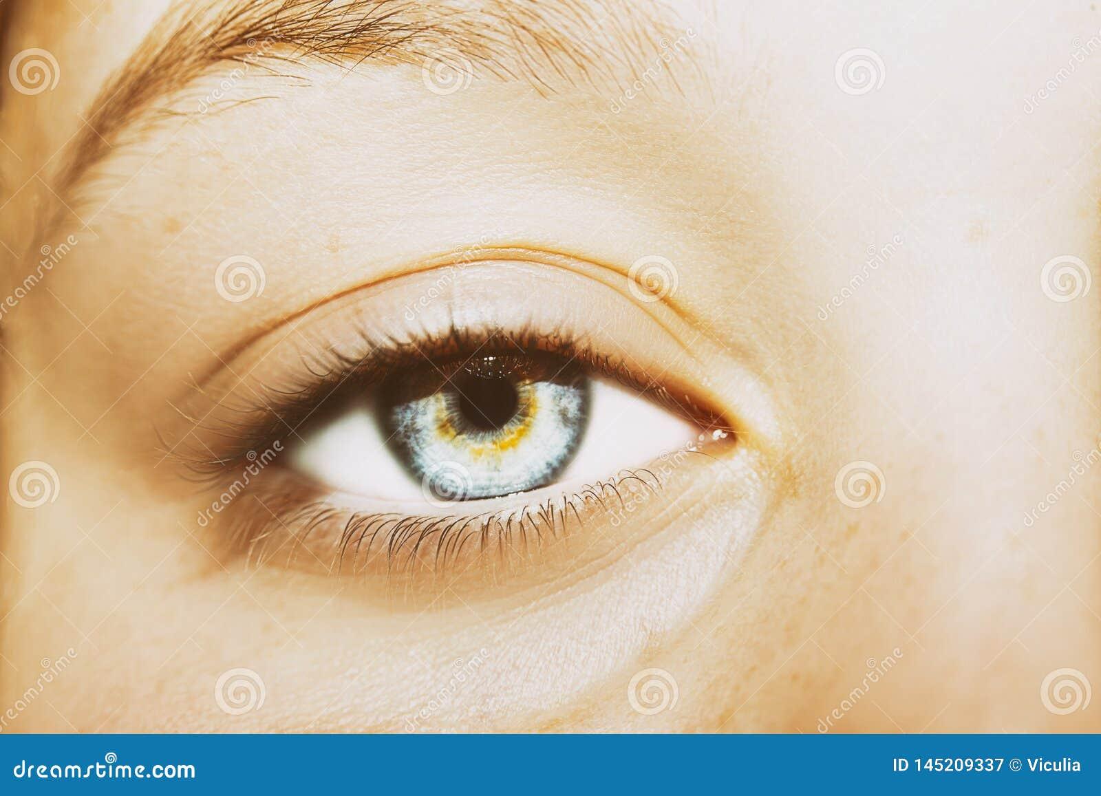Um olho perspicaz bonito do olhar Feche acima do tiro