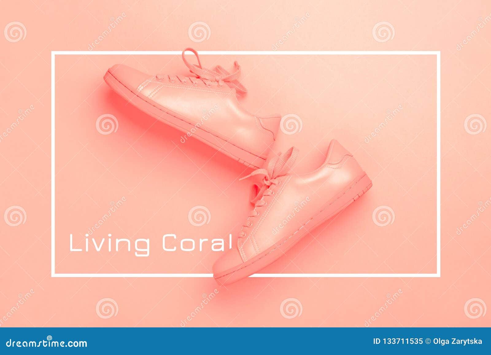 Um par das sapatas corais no fundo coral
