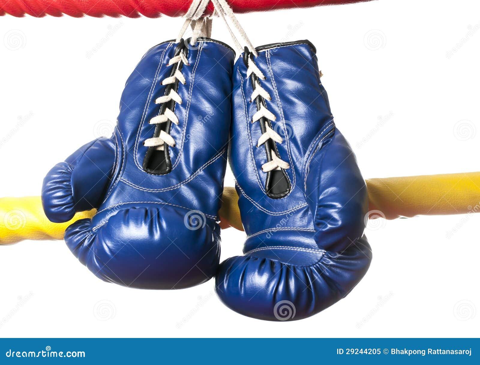 Download Um par de luvas azuis imagem de stock. Imagem de luta - 29244205
