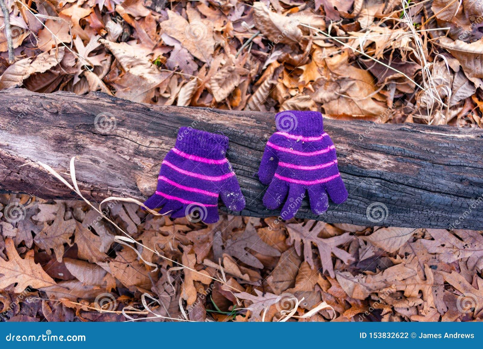 Um par de luvas do inverno de uma criança em um início de uma sessão a floresta durante o inverno