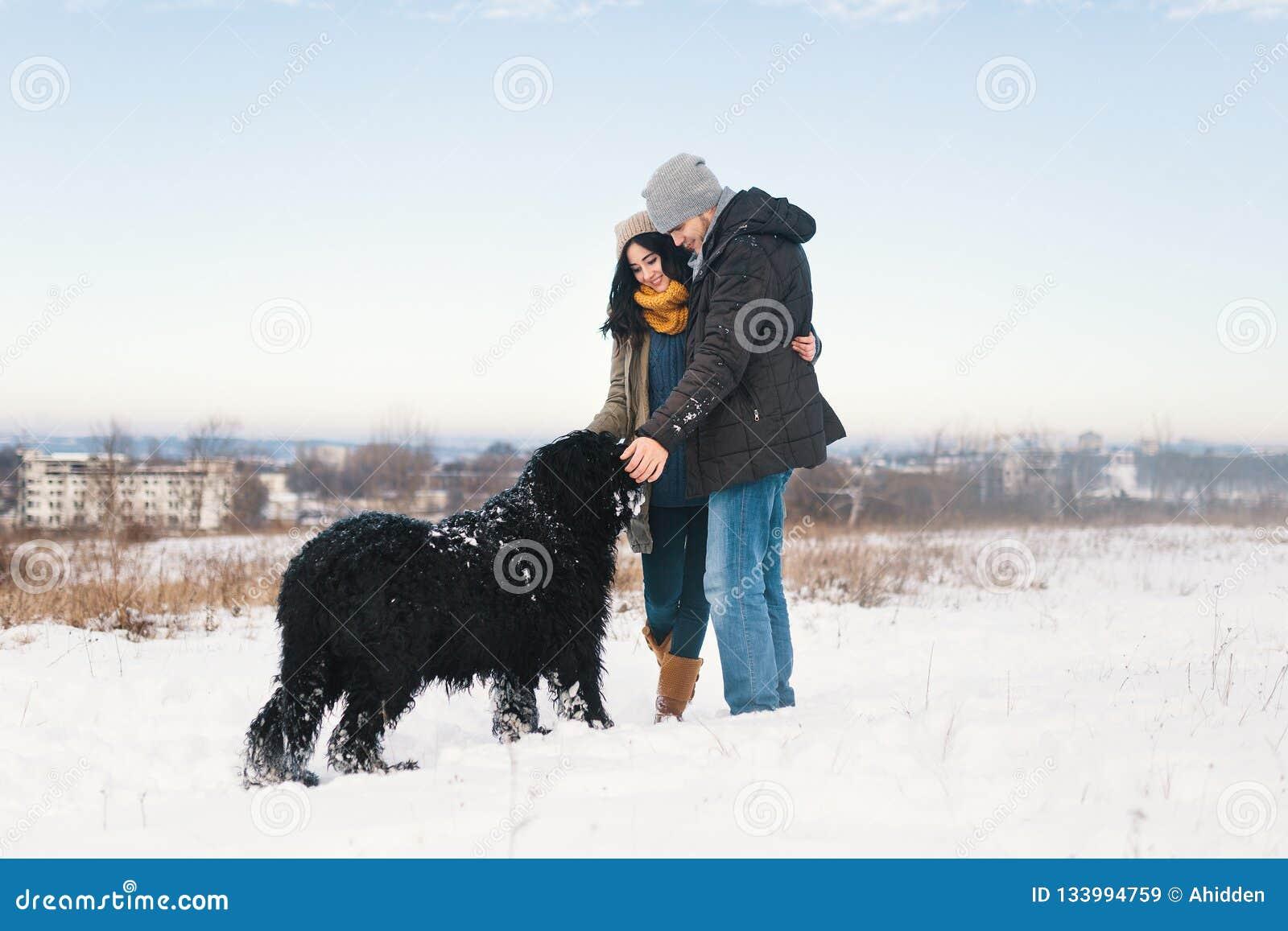 Um par que aprecia o inverno ao andar seu havin grande do cão preto