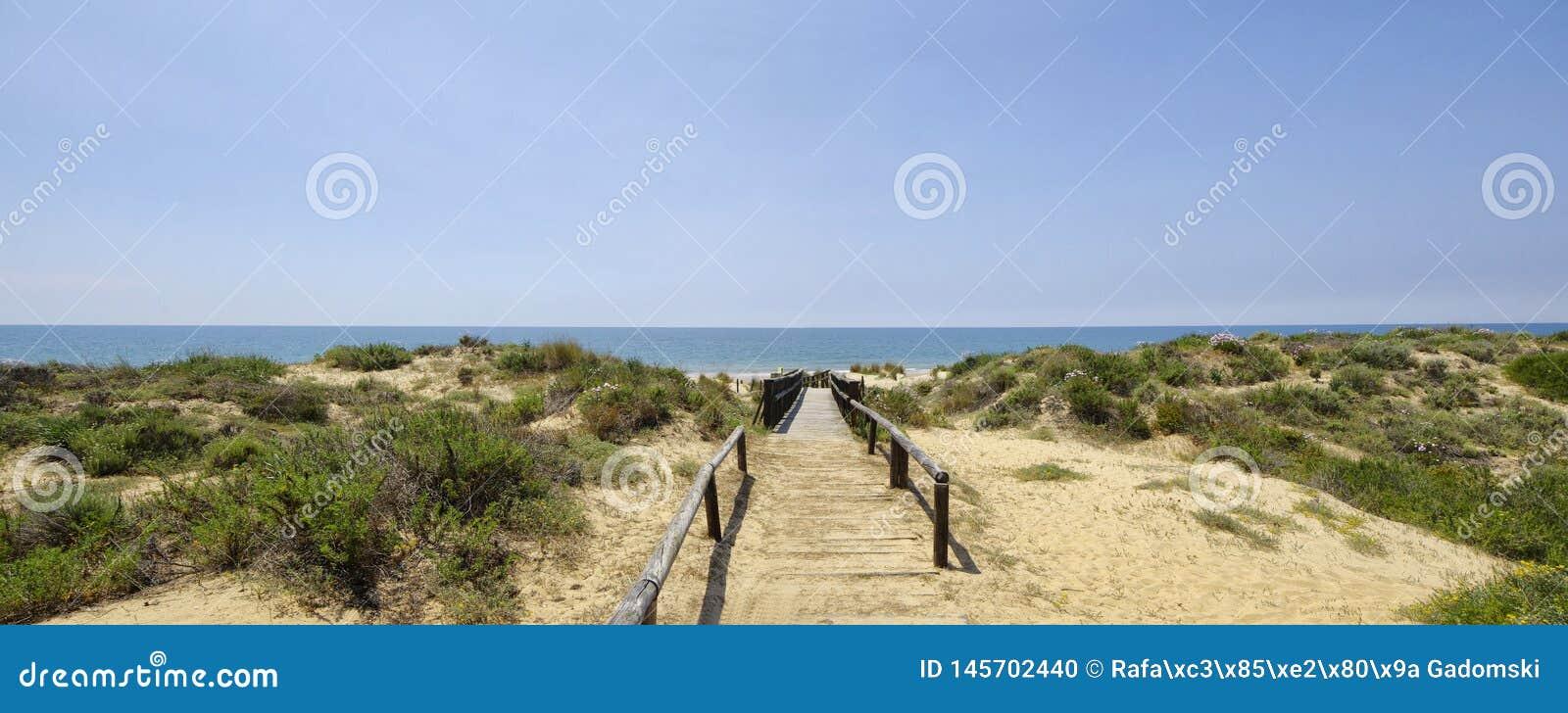 Um passeio ? beira mar de madeira atrav?s das dunas que conduzem ? praia do EL Portil, Huelva, a Andaluzia, Espanha