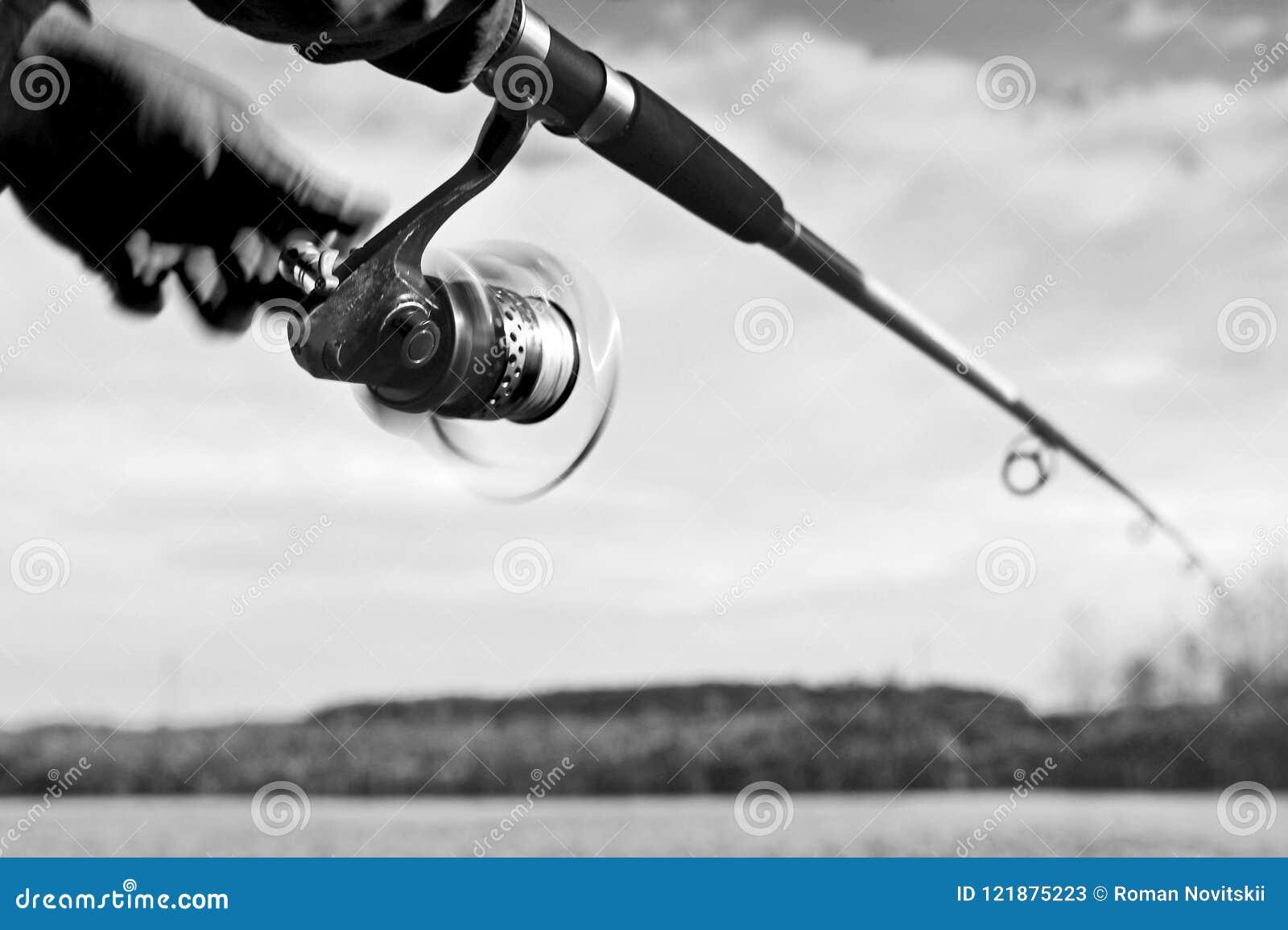 Um pescador trava um peixe Close up de giro do carretel Imagem preto e branco blurry