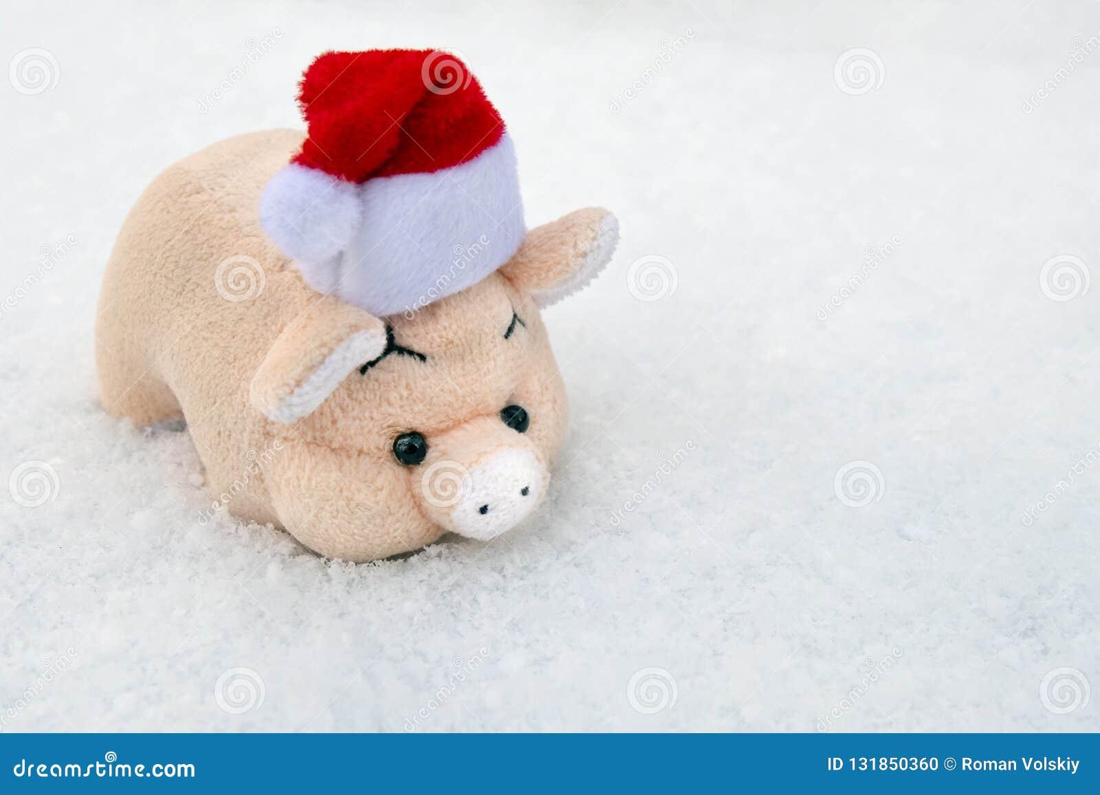Um porco macio do brinquedo em um chapéu vermelho de Santa Claus na neve recentemente caída branca Copie o espaço Símbolo do ano