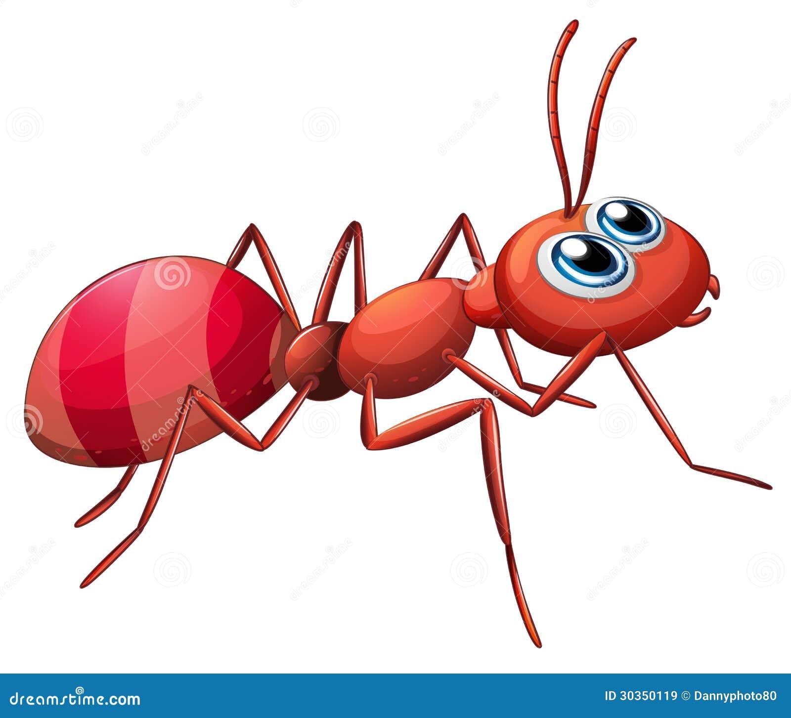 Um rastejamento grande da formiga