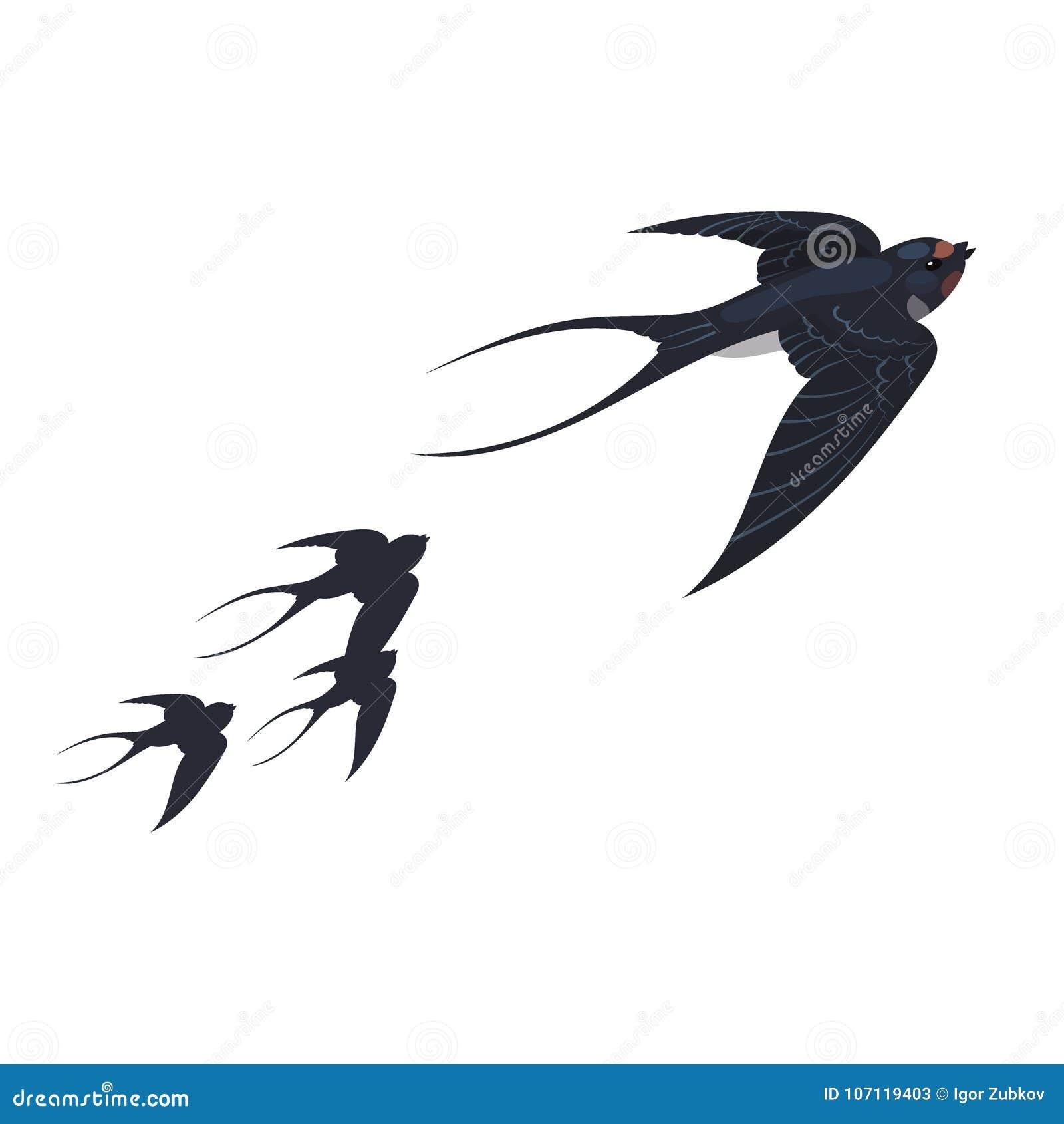 Um Rebanho Das Andorinhas Passaros Da Mola Em Voo Uns Desenhos