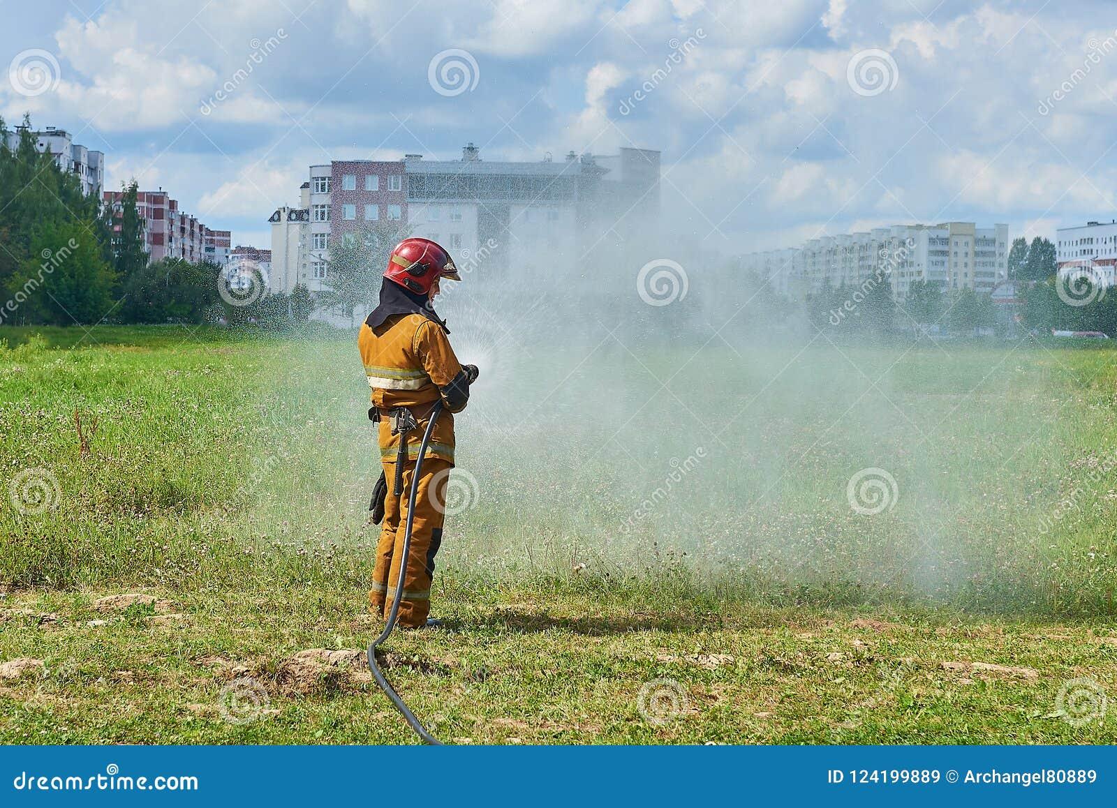 Um sapador-bombeiro do homem de uma mangueira de fogo que molha a grama