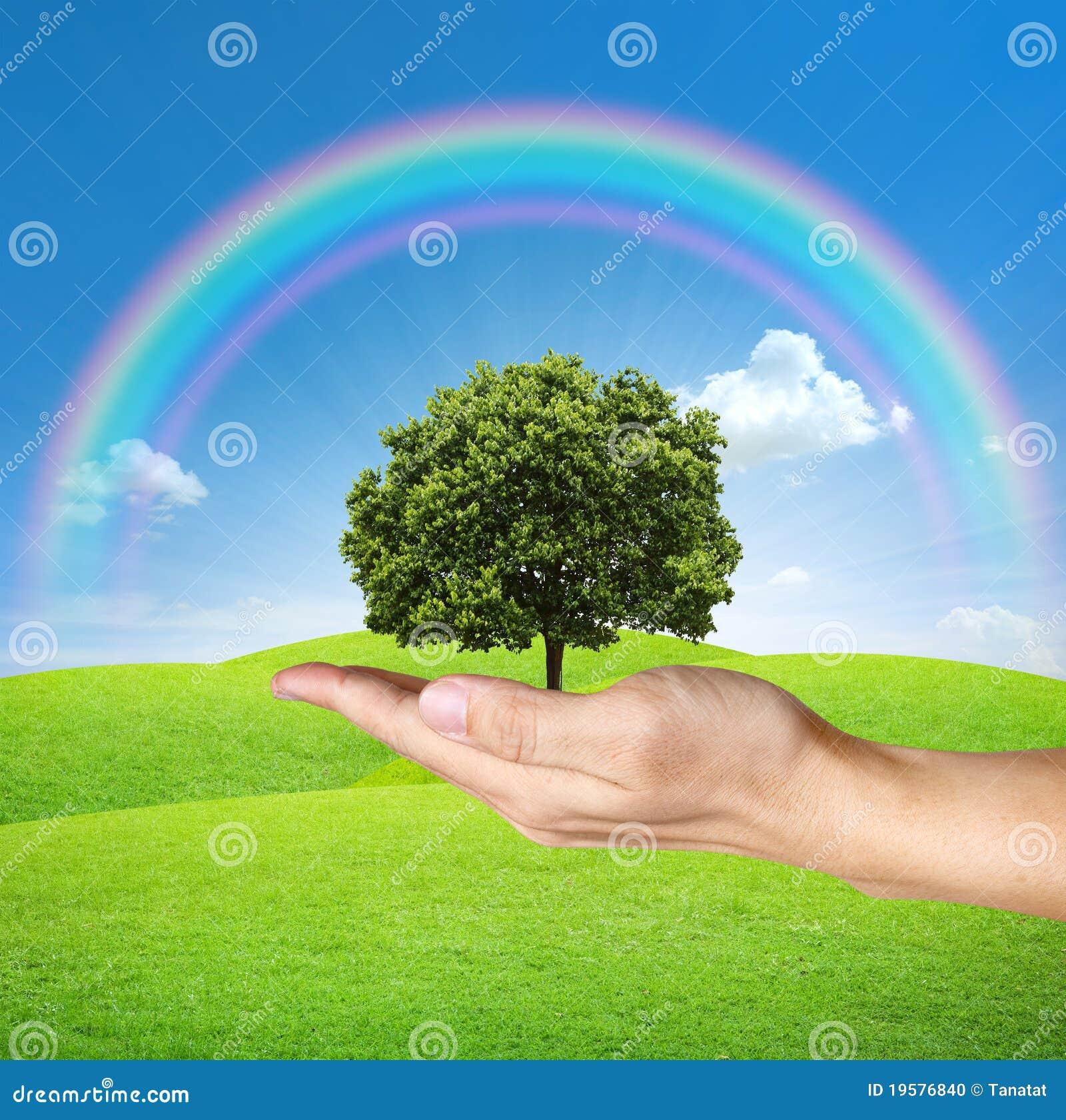 Uma árvore nas mãos humanas com céu azul e arco-íris