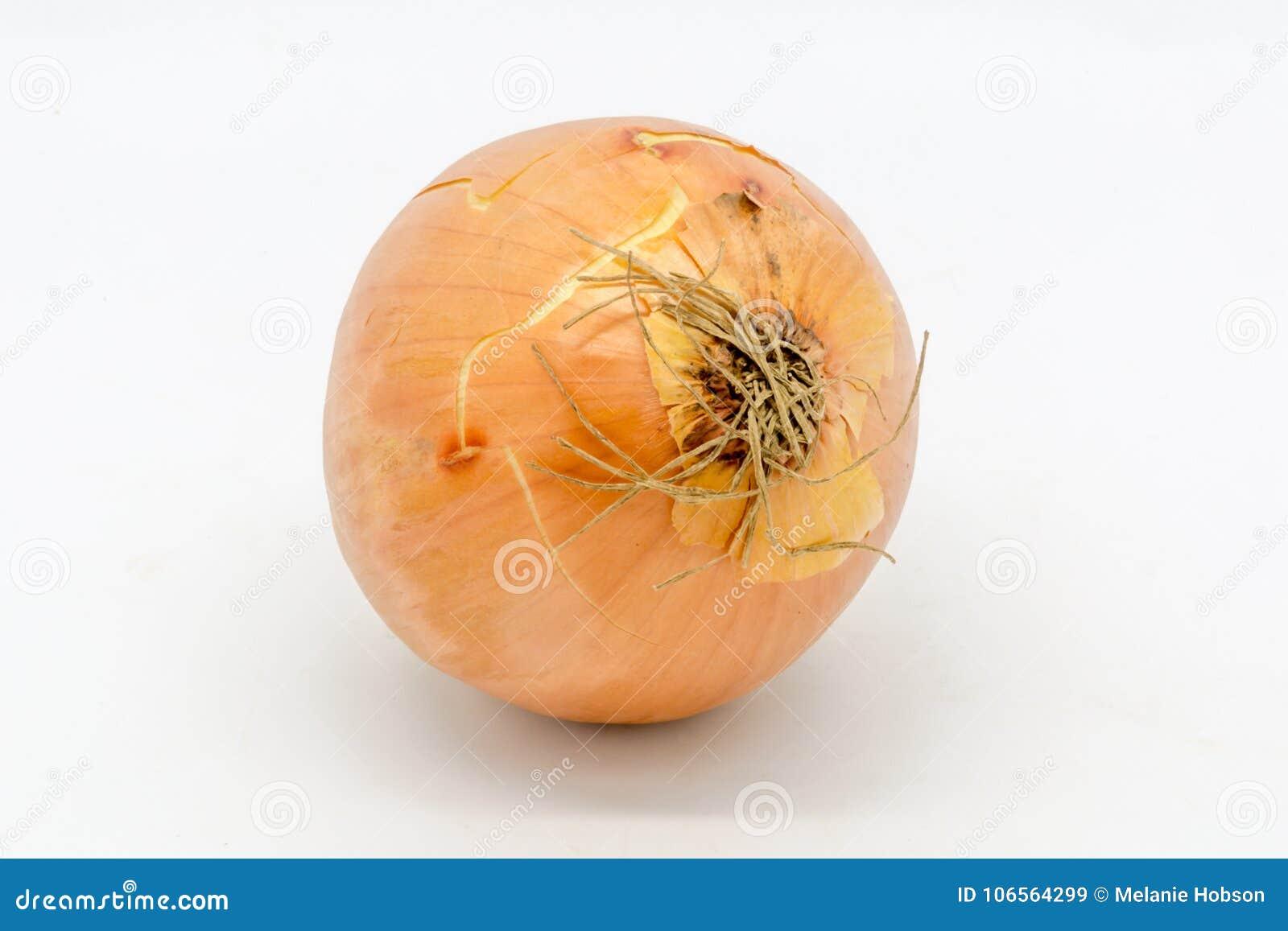 Uma única cebola