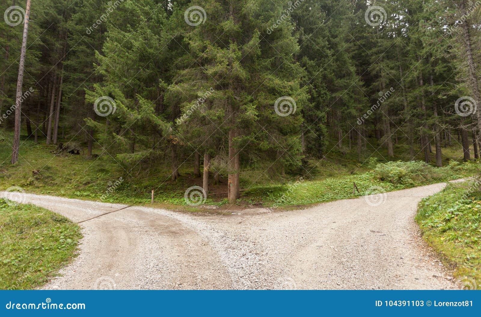 Uma única estrada da montanha racha em dois sentidos diferentes Ele ` s