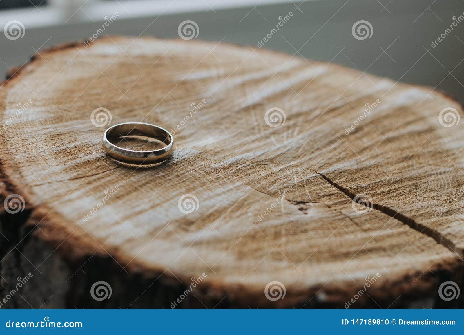 Uma aliança de casamento do ouro que encontra-se no corte de madeira do coto Close-up O foco no anel, o fundo é borrado
