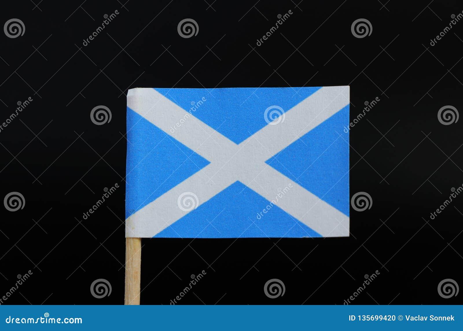 Uma bandeira original de Escócia no palito no fundo preto Um campo azul com uma cruz diagonal branca que estenda aos cantos