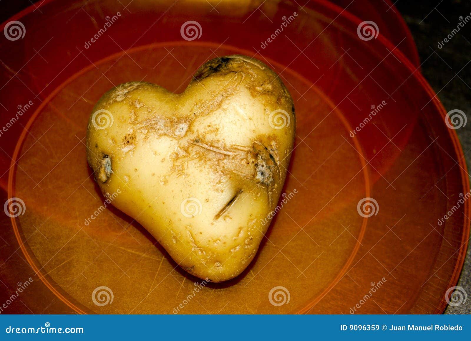 Uma batata heart-shaped