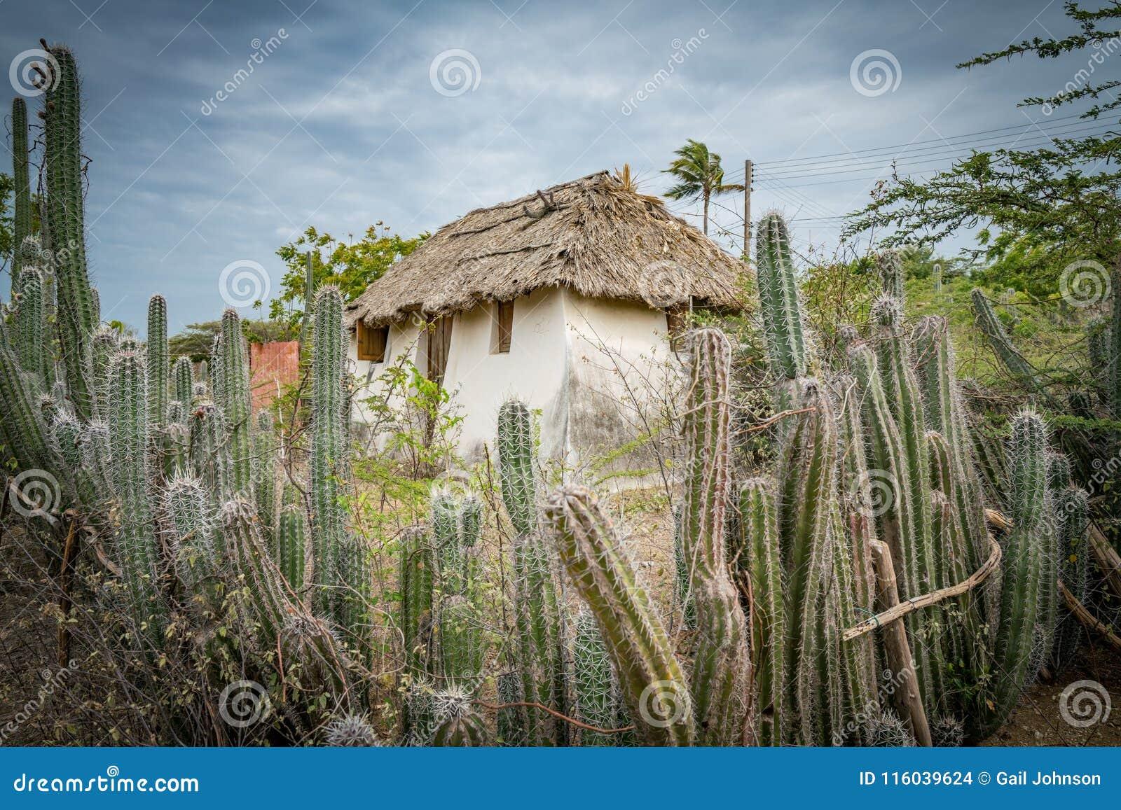 Uma cabana velha do escravo - cerca Curacao Views do cacto