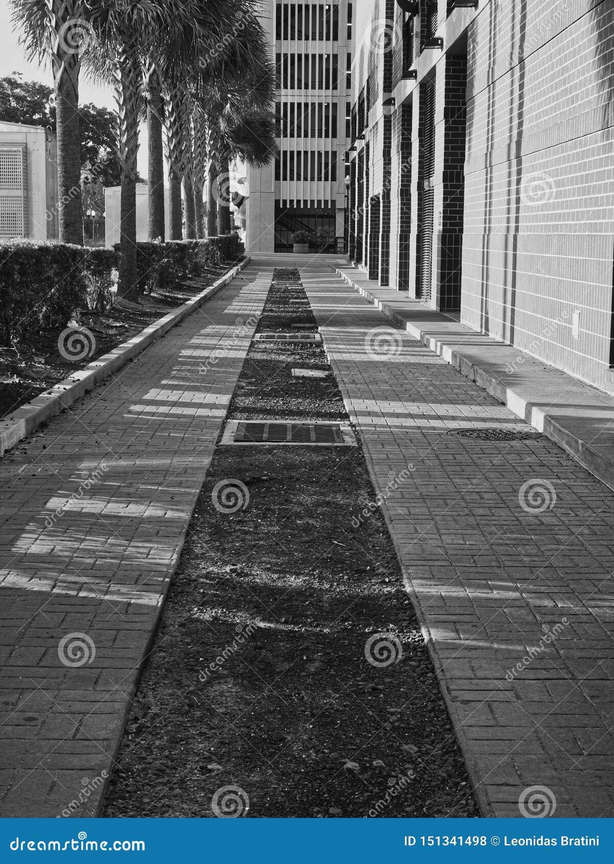 Uma caminhada lateral na baixa