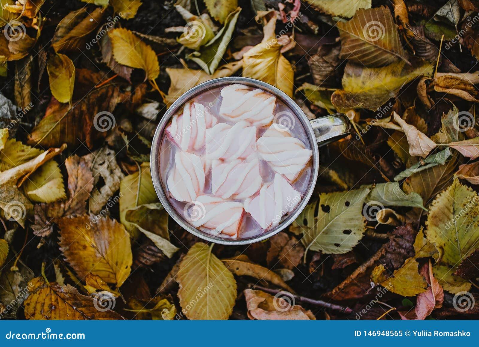 Uma x?cara de caf? com marshmallows em um fundo das folhas amarelas