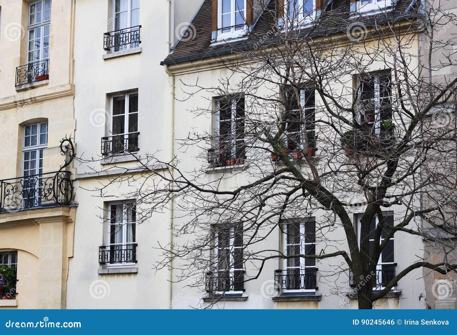 Uma casa de Paris e uma silhueta preta da árvore