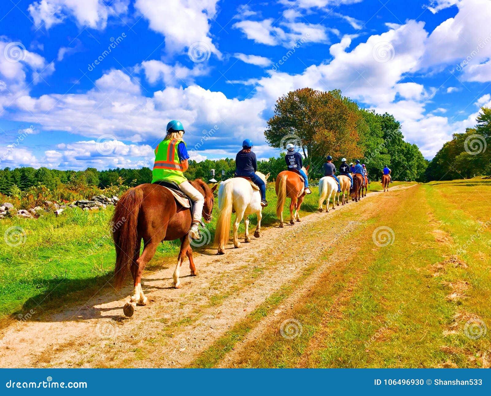 Uma coluna de cavalos de equitação dos povos